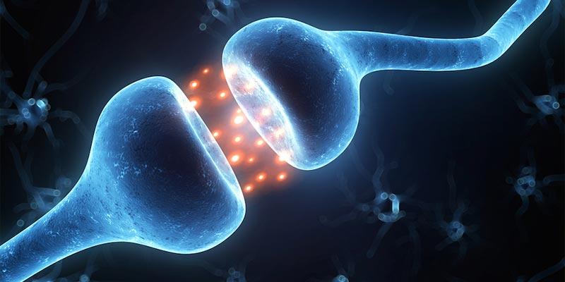 Токсическое воздействие преимущественно синаптического уровня